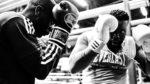 Everlast Boxhandschuhe – Modelle, Infos und Tests