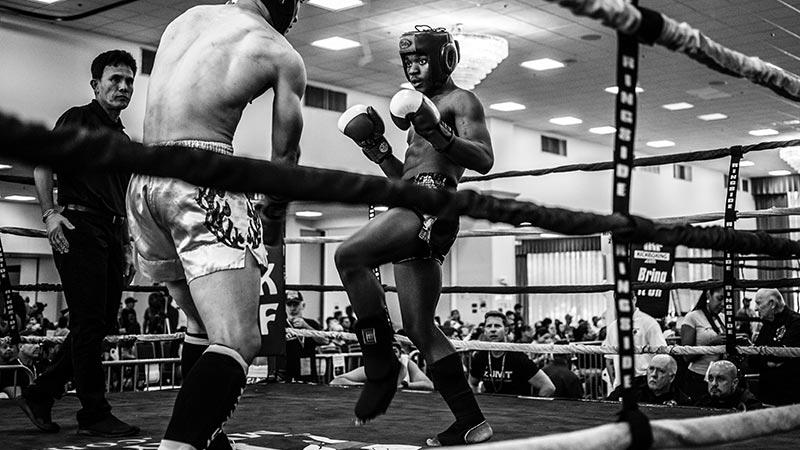 Kickbox Handschuhe - die besten Boxhandschuhe fürs Kickboxen