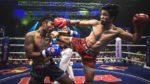 Twins Boxhandschuhe TOP Qualität aus dem Mutterland des Thai Boxing