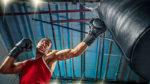Venum Boxhandschuhe – die besten Modelle im Test