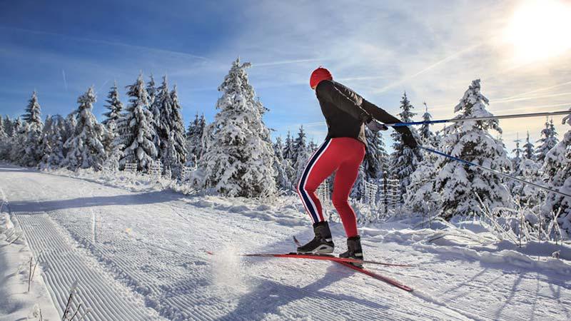 Concept 2 Skierg Skiergometer